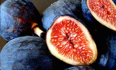 Sex & Food – The Arousing Fig